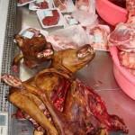 carne-de-cachorro2