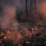 persiste na Itália que teve 127 incêndios em um dia