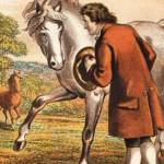 gulliver-pindar-houyhnhnm-mare