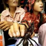 essa é no Cambodja, ninguém quer a arrrrrranha ?