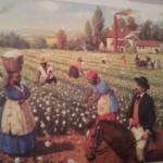 Nunca mais os Confederados veriam suas fazendas como eram