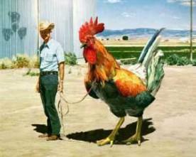 Gripe aviária – Brasil em alerta geral